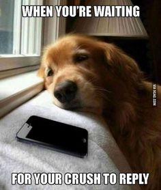 Waiting for him to call