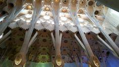 Sagrada Familia,  so fantastic!