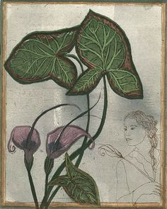 Kirsi Neuvonen, Jos pidät sydämessäsi vihreää oksaa, lopulta sille laskeutuu laulava lintu / If you hold a green branch in your heart, finally a singing bird will alight to it (2009) Finnish Women, Etchings, Water Lilies, Botanical Art, Natural World, Suddenly, Finland, Printmaking, Illustrators