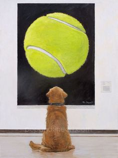 "love this Tom Mosser - ""A Golden at the Museum"" #tennis #pets"
