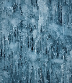 Kelp and Ice by Mark Yaggie, via Behance