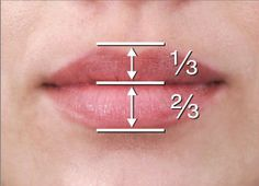 The perfect mouth and the perfect lip have something in common. Do you know what… Der perfekte Mund und die perfekte Lippe haben etwas gemeinsam. Dermal Fillers, Lip Fillers, Facial Anatomy, Face Proportions, Facial Aesthetics, Anatomy For Artists, Lip Injections, Perfect Lips, Natural Lips