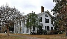 lowndesboro cougar women Dicksonia, also known as the turner–dickson house, was a historic plantation house just south of lowndesboro, alabama, united states dating back to it was destroyed by fire twice.