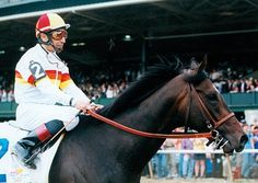 Millennium Wind(1998) Cryptoclearance- Bali Babe By Drone. 5x5 To Princequillo And Mahmoud. 1/2 Brother To Charismatic. 7 Starts 3 Wins 2 Seconds. $769,920. Won 2001 Blue Grass Stakes(G1).
