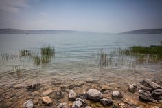 On the rocky shore of the Sea of Galilee in Tabgha