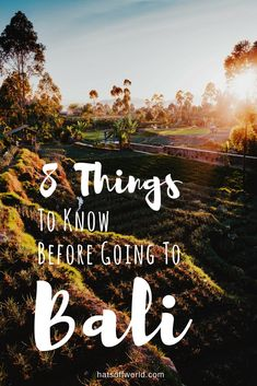 Bali Travel Tips and Advice: 8 Things I Wish I Knew Before Going To Bali.