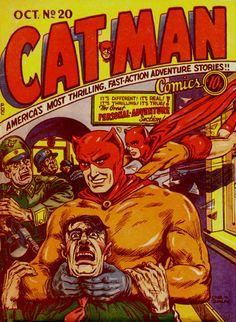 Catman 20 ed | Flickr - Photo Sharing!