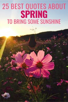 25 Best Quotes About Spring To Bring Some Sunshine To Your Life Relationships Love, Relationship Advice, Relationship Drawings, Relationship Psychology, Relationship Meaning, Relationship Marketing, Relationship Questions, Relationship Pictures, Relationship Building