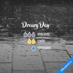 Dreary Day - Essential Oil Diffuser Blend