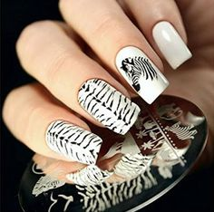 Stamping Template   GET IT HERE - Born Pretty Nail Art Stamping Template Image Plate Zebra Wolf Animal Patterns BP16