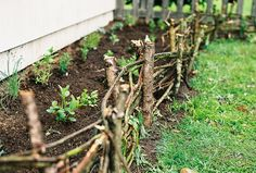 woven edging next to house in the shade garden where the chickens keep scratching soil into the paths. Backyard Plan, Backyard Fences, Garden Landscaping, Vine Fence, Wattle Fence, Dream Garden, Home And Garden, Garden Bed, Natural Fence