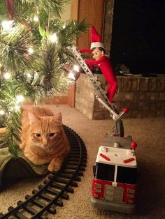 Elf on the Shelf idea - on the fire tuck ladder helping put ornaments not the tree
