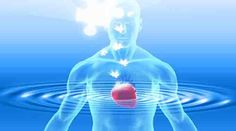 The heart communicates information to the brain and throughout the body via electromagnetic field interactions.