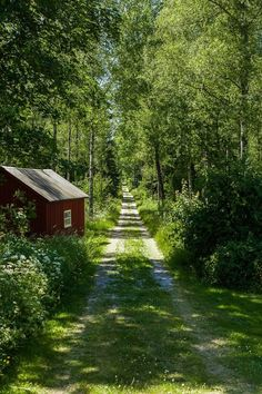 swedish countryside