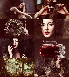 Greek Mythology Dreamcast - Monica Bellucci as Circe She had been terrified by a nightmare in which she saw all the rooms and walls of her house streaming with blood, and fire devouring all the magic drugs with which she used to bewitch her visitors. But she managed to put out the red flames with the blood of a murdered man, gathering it up in her hands; and so the horror passed. When morning came she rose from bed, and now she was washing her hair and clothes in the sea. A number of ...