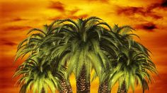 7 libros para viajar al Caribe - http://www.actualidadliteratura.com/7-libros-viajar-al-caribe/