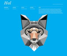 Animal Infographic || Interesting infographic illustration by Thomas Wilder from MGMTdesign. Click image for more