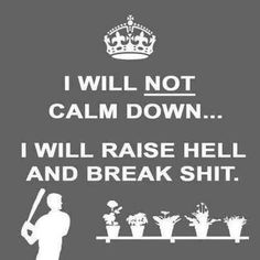 I mean, I WANT to be calm and blah blah blah but it's more in my nature to raise hell and break shit.