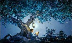 Boy reading a book under a tree by lantern light