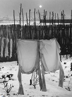 Frozen Shirts, Welwyn Garden City, 1941 by Wolf Suschitzky