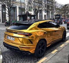 Gold Lamborghini Urus belonging to ⭐😍 Rate this Beast in the comments🤔⬇️ Tag a friend to see what they think😱 . Luxury Boat, Best Luxury Cars, Luxury Suv, Luxury Travel, Gold Lamborghini, Sports Cars Lamborghini, Supercars, Carros Vw, Amazing Cars