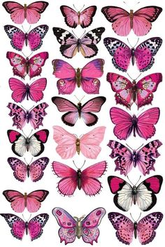 icu ~ Druckvorlage für die Deko-Schmetterlinge in 2019 Butterfly Painting, Butterfly Wallpaper, Pink Butterfly, Colorful Butterfly Drawing, Pink Drawing, Butterfly Outline, Simple Butterfly, Butterfly Quotes, Butterfly Images