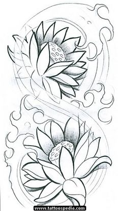 drawing japanese flowers