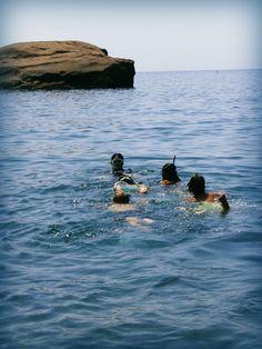 Accompagnati dalla nostra #naturalista Eleonora, a piccoli gruppi i ragazzi hanno fatto #snorkeling.