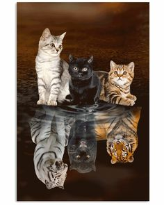 Diy Diamond Painting Cats tigers Full Square/round drill Resin Rhinestones Mosaic full Embroidery display Cross Stitch Home Decor - Katzen Baby Animals Super Cute, Cute Little Animals, Cute Funny Animals, Cute Dogs, Cute Cat Wallpaper, Animal Wallpaper, Cute Animal Drawings, Cute Animal Pictures, Cute Cats And Kittens