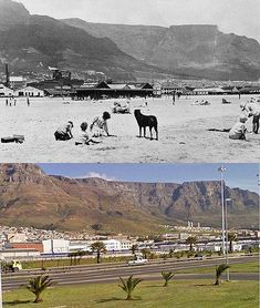 Woodstock beach: Lost in the sands of time Old Pictures, Old Photos, Cape Town South Africa, Most Beautiful Cities, Belleza Natural, African History, Woodstock, The Great Outdoors, Beach