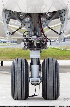 Boeing 787-8DZ Dreamliner aircraft picture