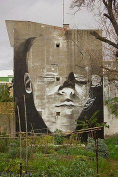 Graffiti & Street