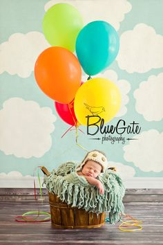 Sacramento Newborn Photographer Inspired by Disney's Up