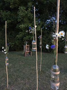 Bambous fleurs