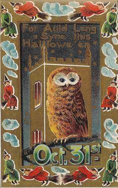 Owl Halloween Postcard by snap713, via Flickr