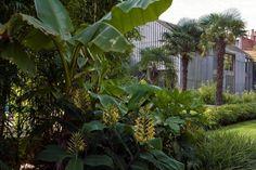 Bart & Pieter   Tuinarchitectuur - gemeenschappelijke tuin met tropische inslag