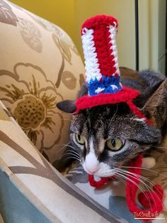 Uncle Sam Cat Hat Hats for Cats 4th of July Cat Hat Clothes