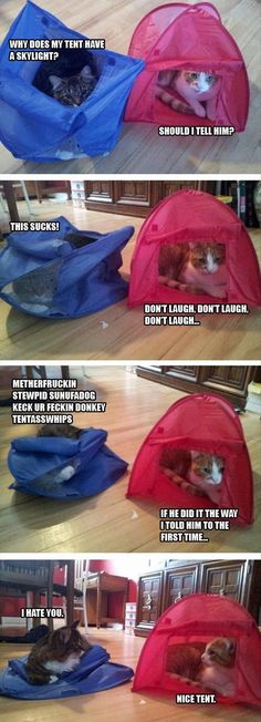 Tents these days.