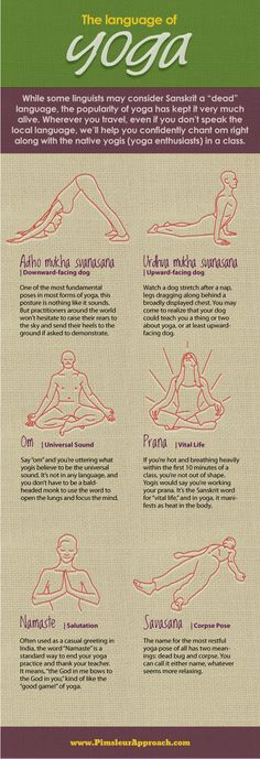 The Language of Yoga - INFOGRAPHIC Loved and pinned by www.downdogboutique.com