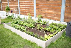Home And Garden, Outdoor Structures, Plants, Gardening, Lawn And Garden, Plant, Planets, Horticulture