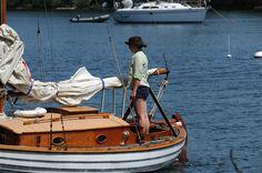 The Dawn Treader ~ Kingston Ontario, Ferry Boat, Boating, Dawn, Sailing, Wolf, Stress, Cottage, Island