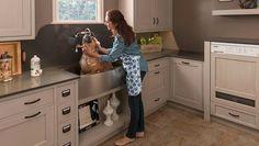 home dog washing station ideas dog shower ideas dog bathtub large sink Wood Mode, Dog Washing Station, Dog Station, Pull Out Shelves, Pet Gear, Baby Gates, Kitchen Cabinet Storage, Kitchen Organization, Dog Shower