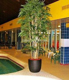Anthracite ceramic pots Ceramic Pots, Plant Growth, Environment, Relax, Ceramics, Interior, Design, Plant, Ceramica