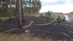 Już dwa pożary lasu w tym roku!