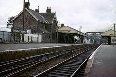 Tavistock North Devon, all gone. Woburn Abbey, Disused Stations, Old Train Station, Tavistock, Steam Railway, Southern Railways, Devon And Cornwall, Devon England, North Devon