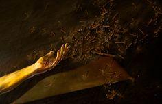 "Detail of ""Eternal Eclipse"" by Aladino Ghioni, St.Zeno Basilica, Verona, Italy"