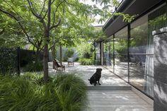 david neil architecture / elwood street house, melbourne