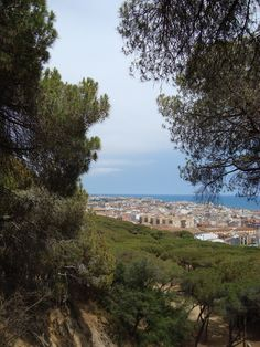 View from Dalmau Park on Calella and Pineda de Mar