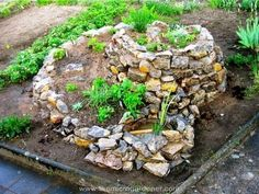 Herb spiral planted out with a pond.