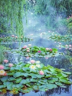 "rosiesdreams: ""Monet's Pond. By Mika mikasuutari "" Beautiful World, Beautiful Gardens, Beautiful Places, Water Lilies Painting, Nature Aesthetic, Lily Pond, Amazing Nature, Belle Photo, Beautiful Landscapes"